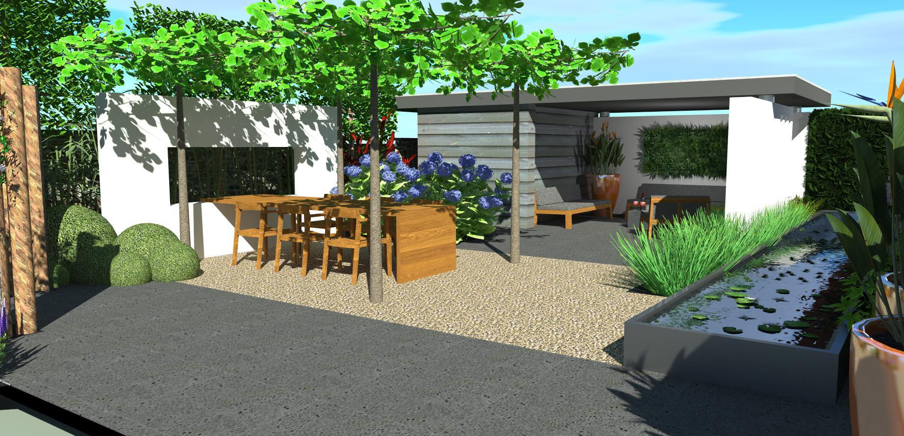 Strakke tuin met overkapping en waterelement for Strakke kleine tuin
