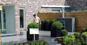 Maintenance: we will keep your garden looking fabulous